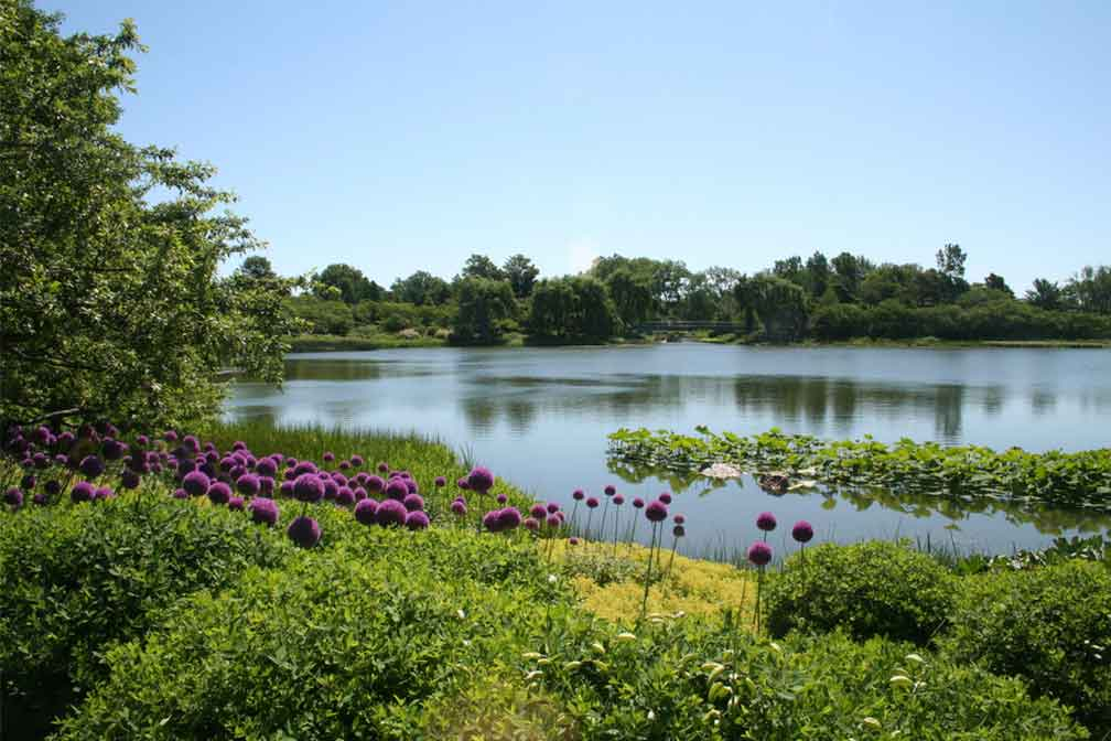 Colombia: The Bogota Wetlands Re-Opened